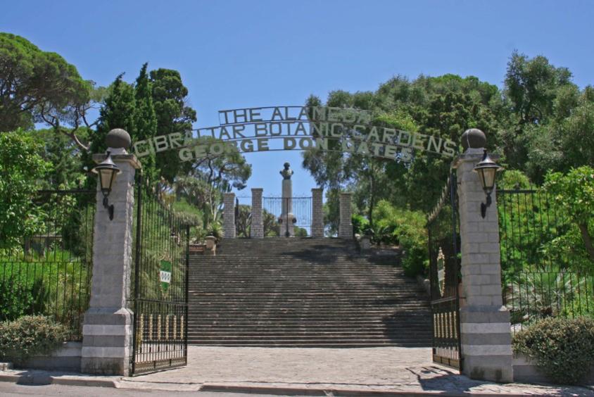 alameda gardens 1