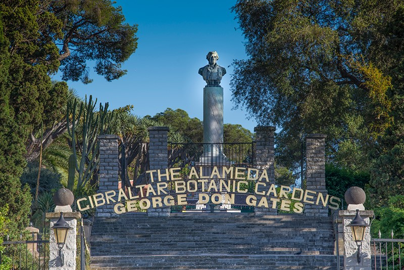 alameda plants-features