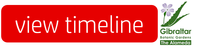 timeline governors-