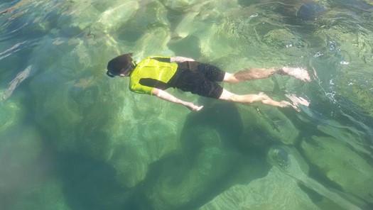 nautilus-snorkelling-