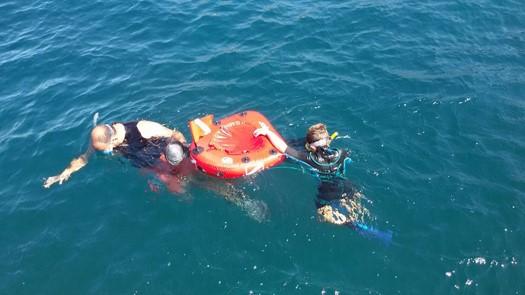 nautilus-snorkelling