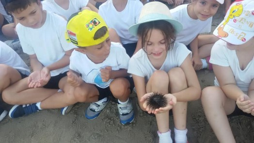 Nautilus Project Marine Awareness Gibraltar Schools Programme