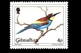 1988 Birds Gibraltar Stamp